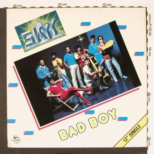 Bad Boy  singel 12'